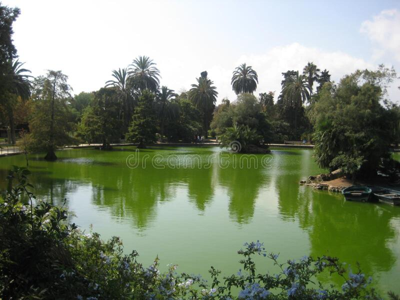 city-park-pond royalty free stock photography