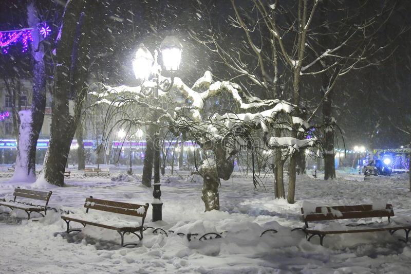 City Park on a snowy evening. stock photography