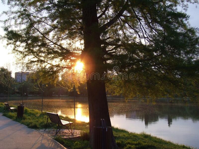 city-park-at-sunset royalty free stock images