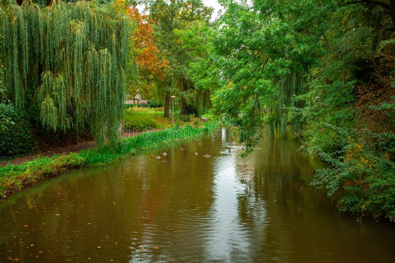 City park, trees reflection on the pond water, autumn. Eindhoven, Netherlands. Landscape stock images