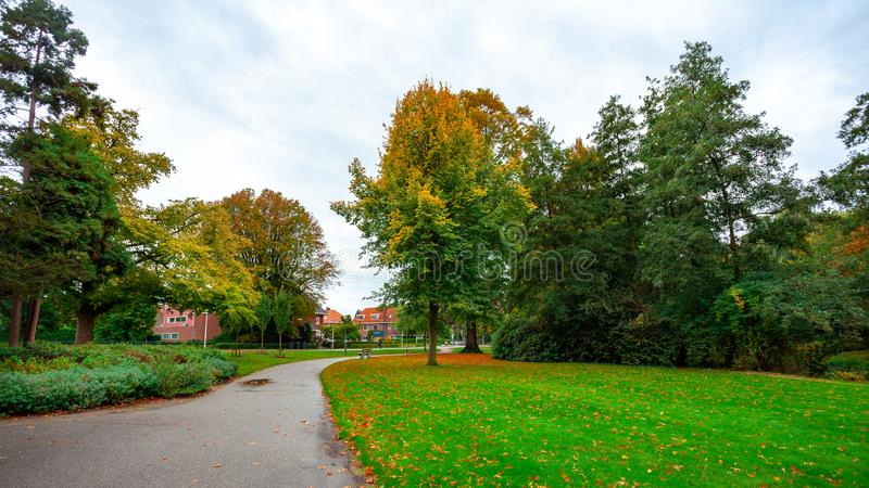 City park, trees reflection on the pond water, autumn. Eindhoven, Netherlands. Landscape royalty free stock photos