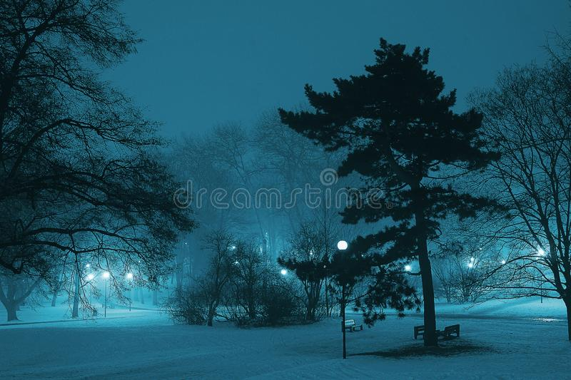 City park at winter royalty free stock images