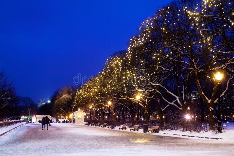City park on winter season, festive christmas garlands lights on trees, walking people, beautiful romantic snowy night street stock photos