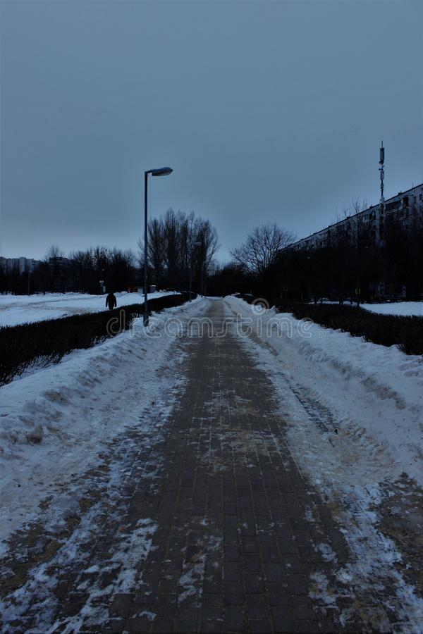 Pedestrian walkway cleared of snow. City Park. Winter. The walking path is made of red stones. The path along the road. Bushes along the path stock photo