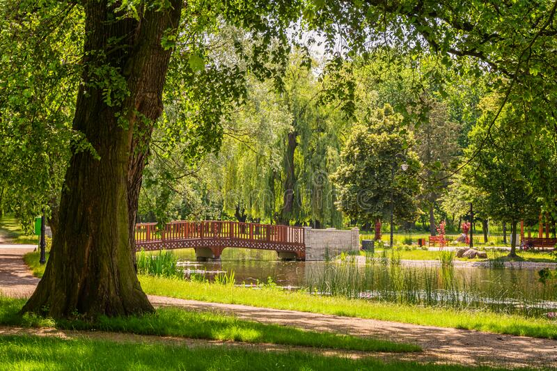 City park in the city of Zdunska Wola, Poland. A revitalized park from the 19th century in the city center stock photography
