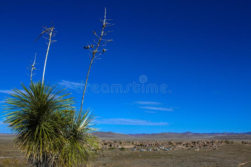 Long view of City of Rocks State Park near Silver City, New Mexico. Long view of City of Rocks State Park in New Mexico, with a large Soaptree Yucca in the royalty free stock photos