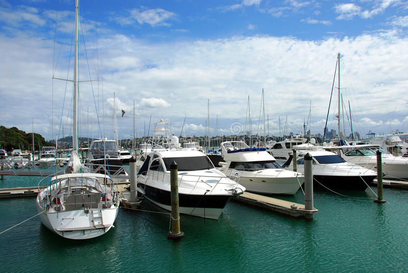 City of Sails, Auckland royalty free stock image
