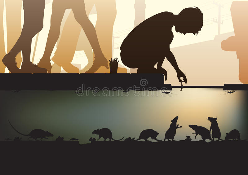 Download City sewer stock vector. Illustration of street, animals - 33208149
