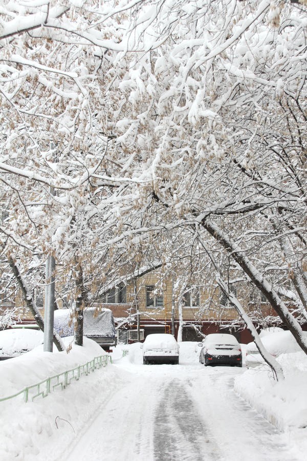 Download Snowfall in the city. stock image. Image of climate, energy - 29722873