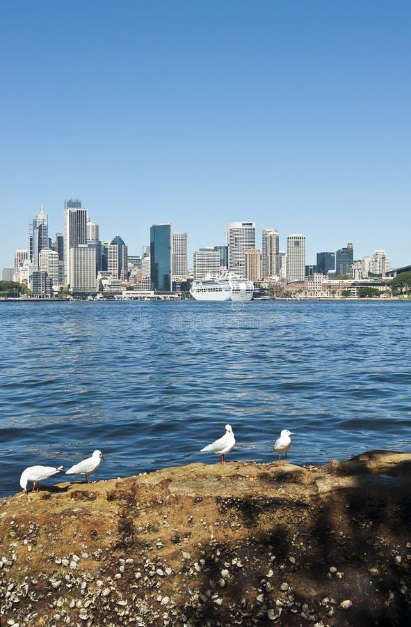 City of Sydney royalty free stock image
