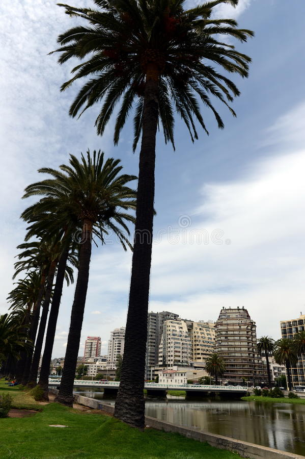 The city of vina del Mar, the administrative center of the homonymous municipality, part of the province of Valparaiso. VINA DEL MAR, CHILE - NOVEMBER 24,2014 royalty free stock photo