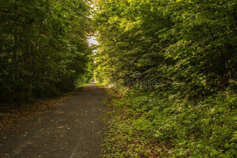 City walking and Biking path stock photo
