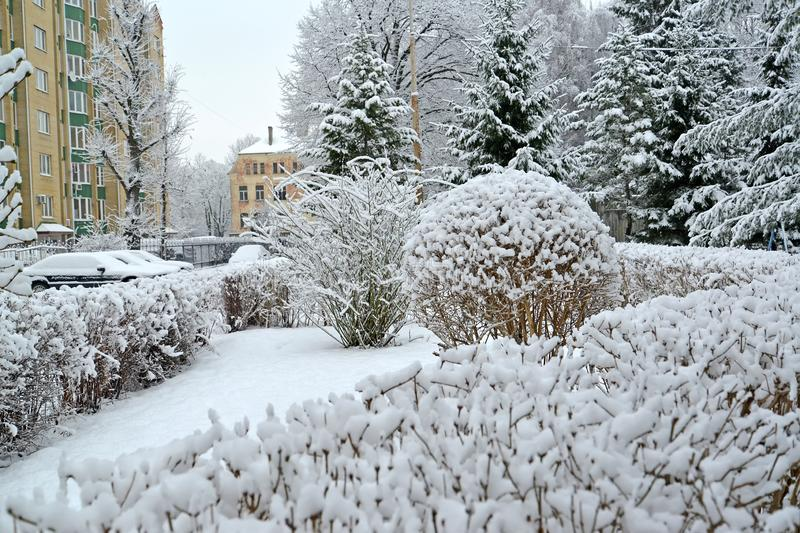 A city yard filled with snow. Winter stock photo