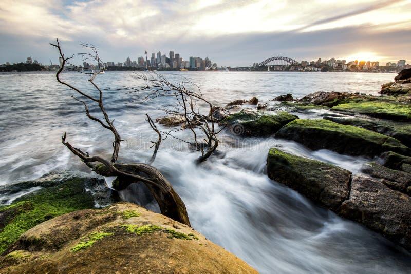 Cityline Сиднея австралийца от CBD через мост гавани к северному Сиднею в расстоянии над гаванью мочит во время отлива стоковое изображение