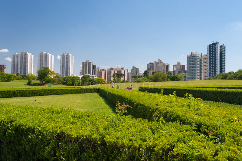 Cityscape av Curitiba, Brasilien royaltyfri fotografi