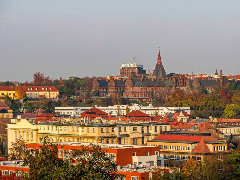 Cityscape av gamla Prague, belade med tegel tak av gamla hus arkivbild
