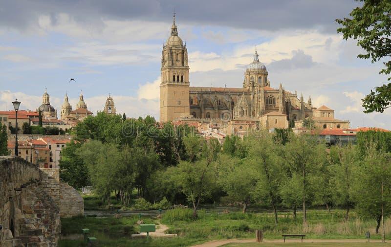 Cityscape av Salamanca med sikt av den nya stadsdomkyrkan arkivbilder