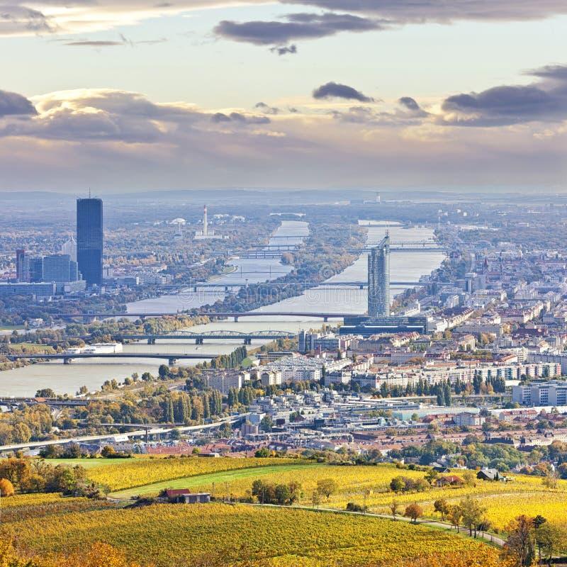 Cityscape av Wien och Donauen i hösten på skymning royaltyfri fotografi