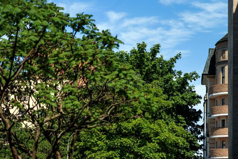 Cityscape of Bengaluru, India. Doma derev`ya ulitsa stock photography