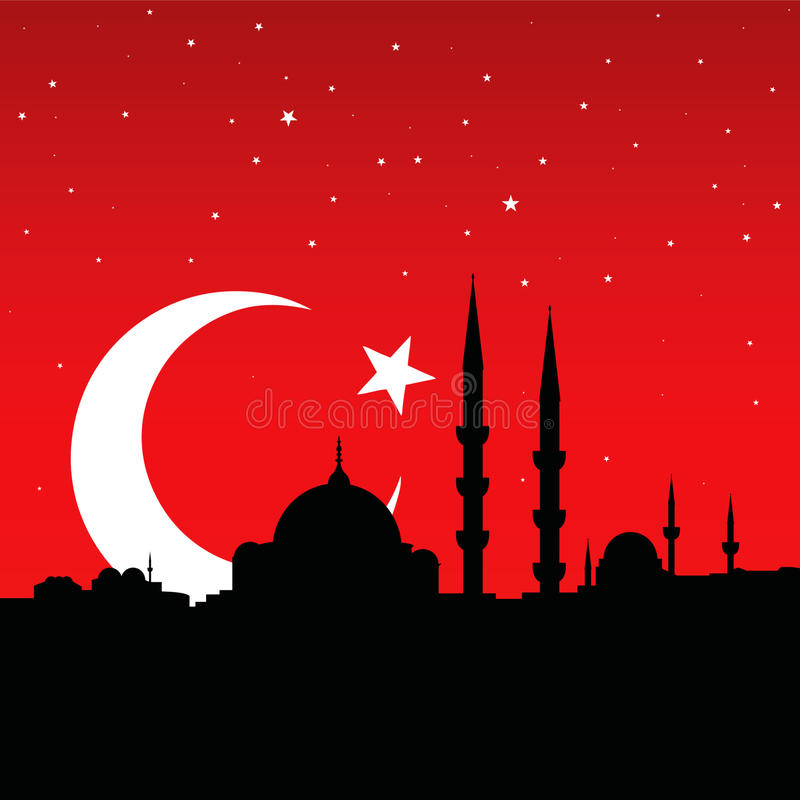 cityscape istanbul vektor illustrationer