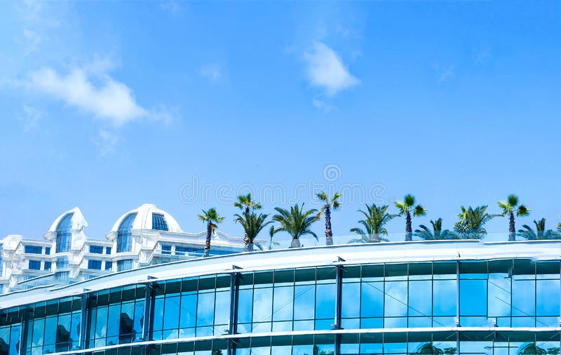 Cityscape, palmen op het dak van het bureau Concept ecologie in de stad stock afbeelding