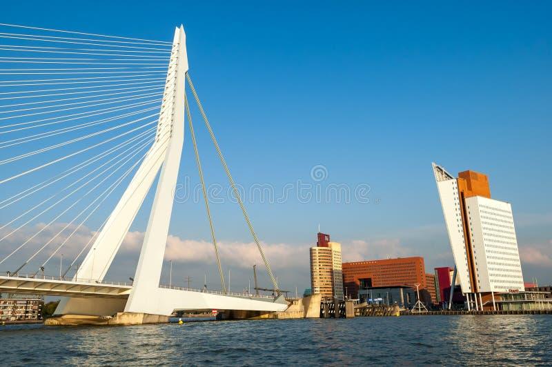 Cityscape of Rotterdam with Erasmus Bridge royalty free stock photo