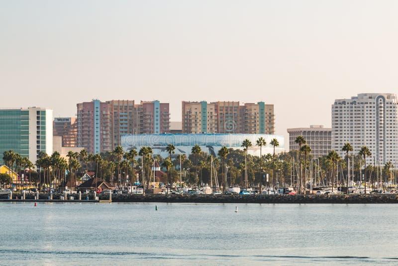 Cityscape van de binnenstad van Long Beach met Wyland-Stichtingsmuurschildering royalty-vrije stock afbeelding
