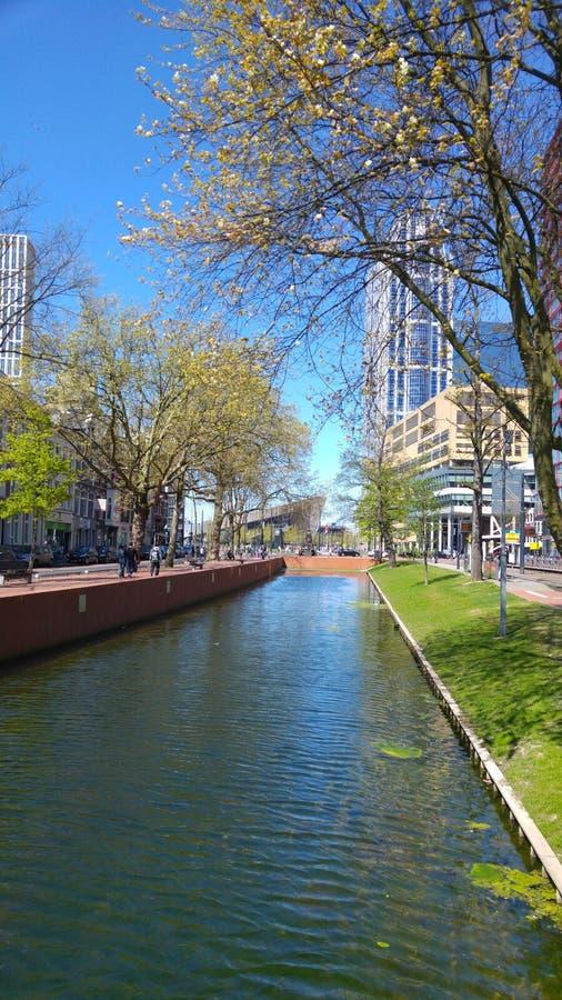 Cityview de Rotterdam fotografia de stock royalty free
