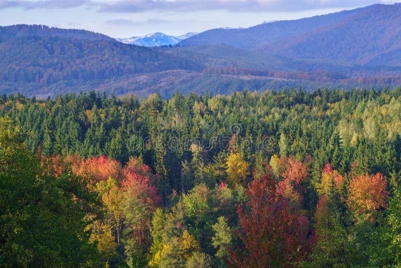 Ciucas山在秋天 库存照片
