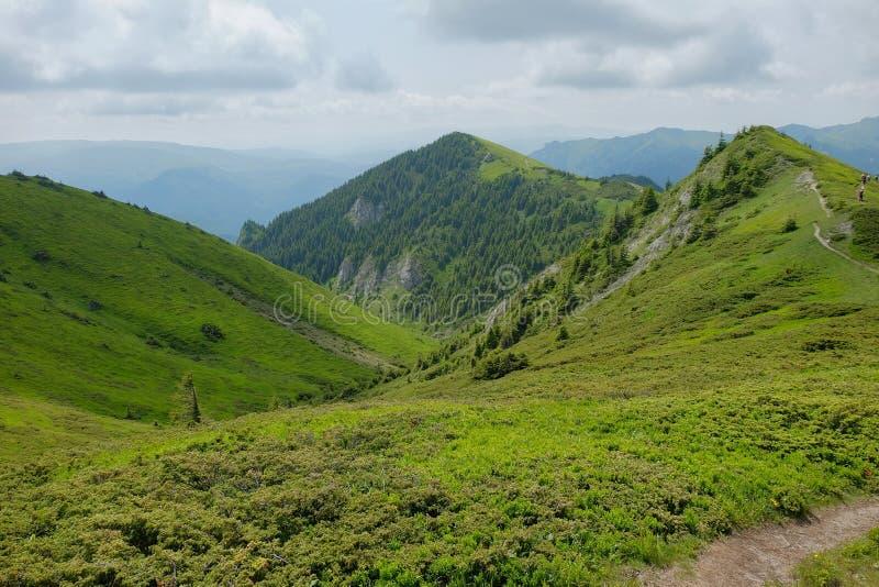 Ciucas山在罗马尼亚 免版税库存图片