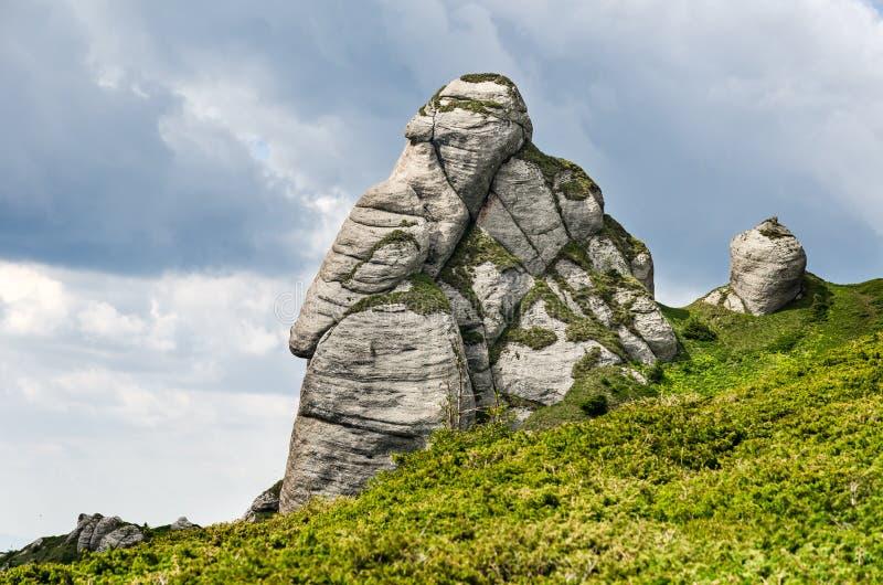 Ciucas, montagne carpatiche, Romania fotografia stock