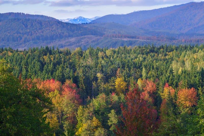 Ciucasbergen in de Herfst stock foto's