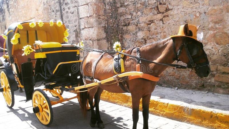 Ciudad Amarilla royalty free stock image