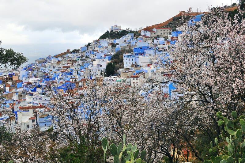 Ciudad azul de Chefchaouen, Marruecos foto de archivo