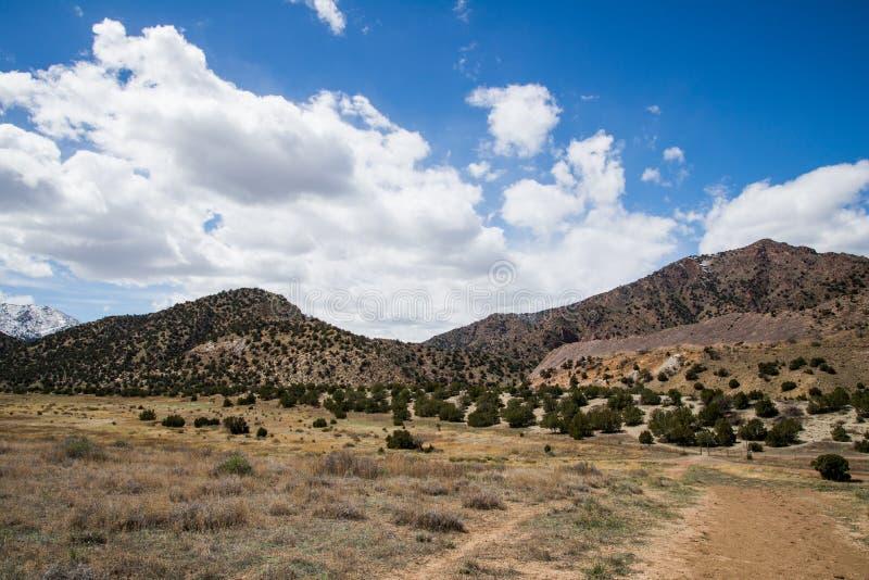 Ciudad Colorado de Canon del barranco del templo del parque de la ecología imagenes de archivo