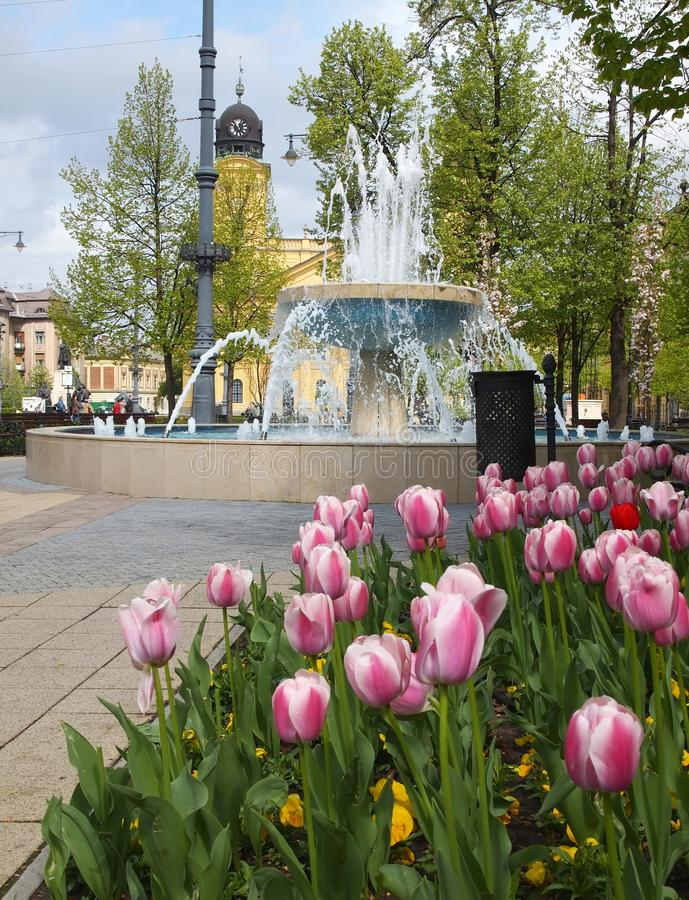Ciudad de Debrecen fotografía de archivo libre de regalías