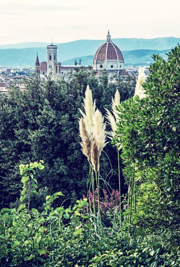 Ciudad de Florencia con la catedral Santa Maria del Fiore y el campanil fotos de archivo libres de regalías