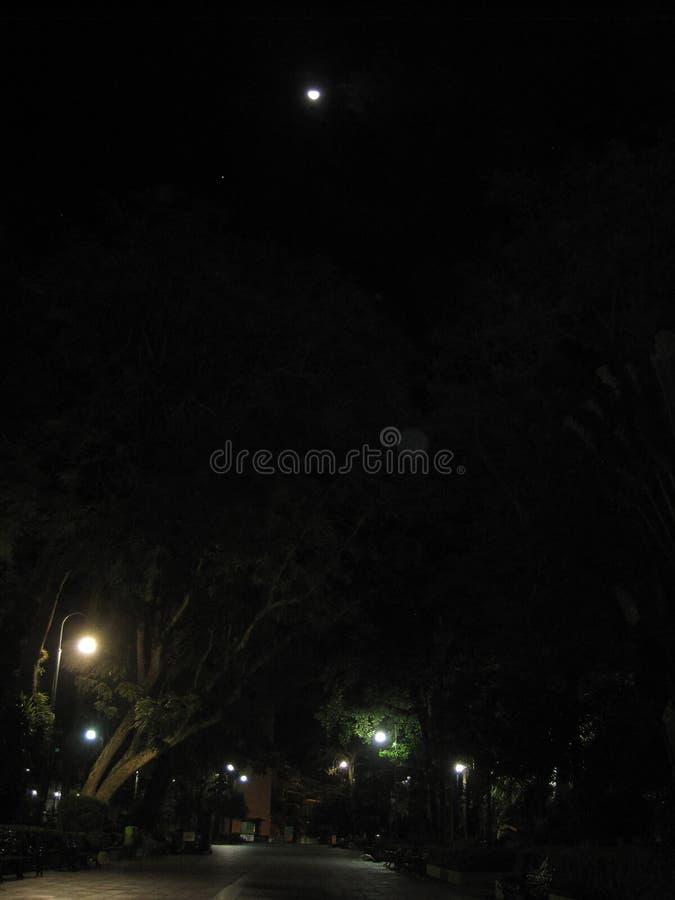 Ciudad de noche Nigh stad arkivbilder
