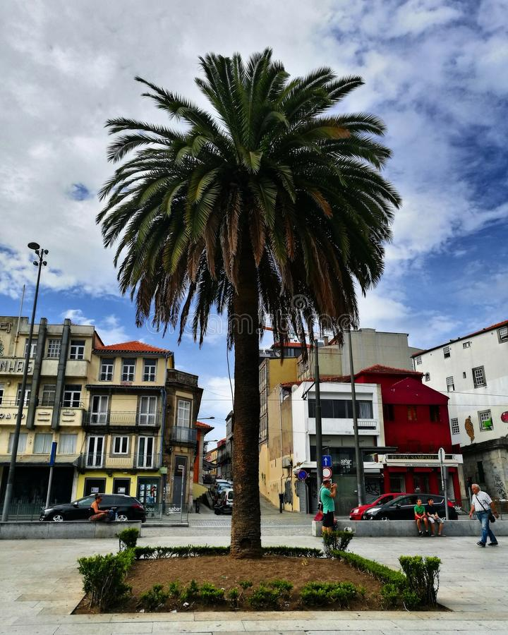 Ciudad de Oporto fotos de archivo