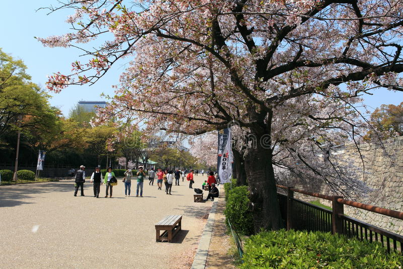 Ciudad de Osaka, Japón fotos de archivo