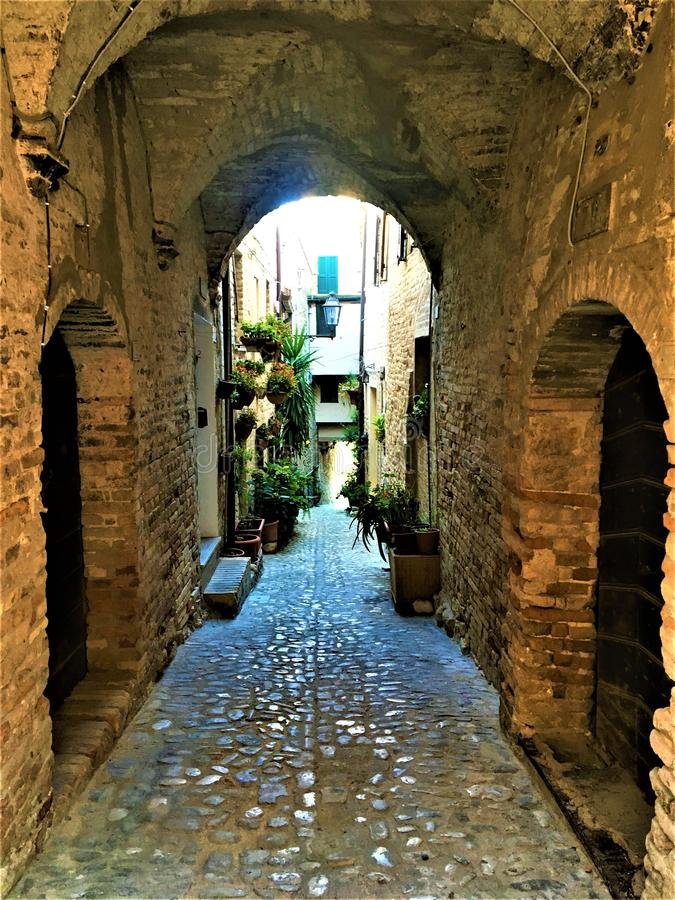 Ciudad de Torre di Palme en la región de Las Marcas, Italia. Ruta estrecha, plantas, arcos, historia y tiempo foto de archivo libre de regalías