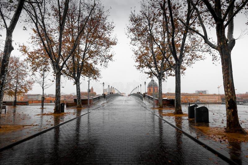 Ciudad de Toulouse y ciudad y castillo viejos de Carcasona foto de archivo