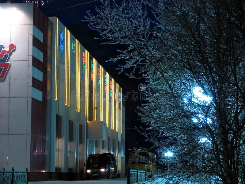 Ciudad en la noche. fotos de archivo libres de regalías