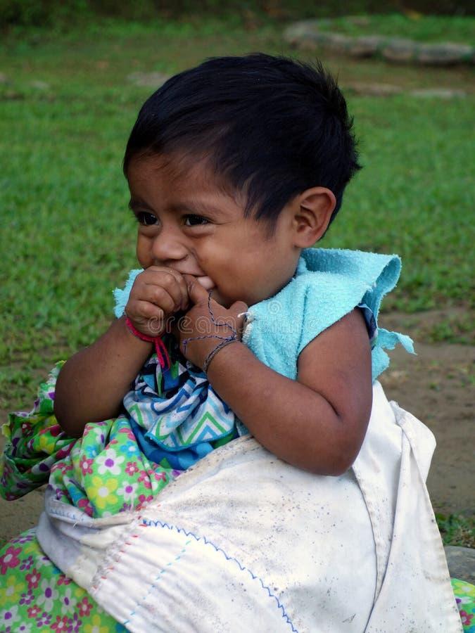 Ciudad Perdida, Colombia: Ritratto di piccolo ragazzo indigeno che sorride ai turisti fotografia stock libera da diritti