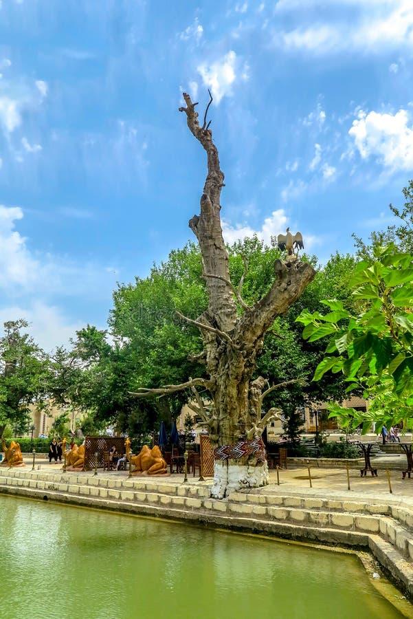 Ciudad vieja 92 de Bukhara imagen de archivo