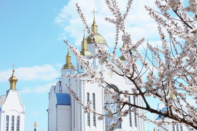 Ciudad vieja de Chernigov fotografía de archivo