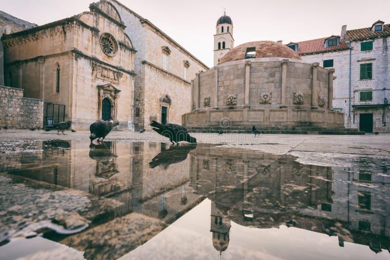 Ciudad vieja de Dubrovnik Plaza histórica con la fuente grande de Onofrio, paisaje urbano de la salida del sol, Croacia fotografía de archivo libre de regalías