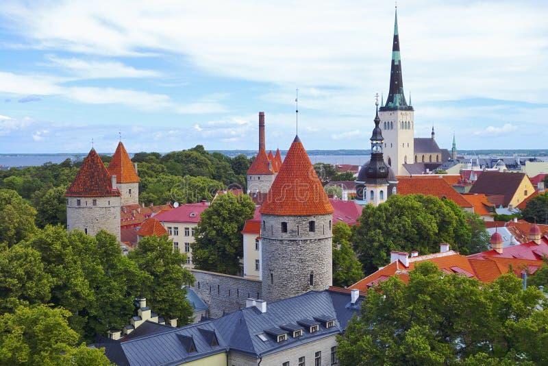 Ciudad vieja de Tallinn en verano foto de archivo libre de regalías