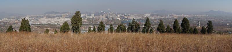 Ciudad y árboles e hierba en invierno foto de archivo libre de regalías