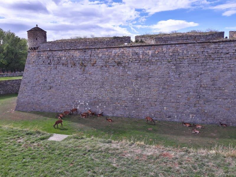 Ciudadela av Jaca, en militär befästning i norr Spanien arkivbild